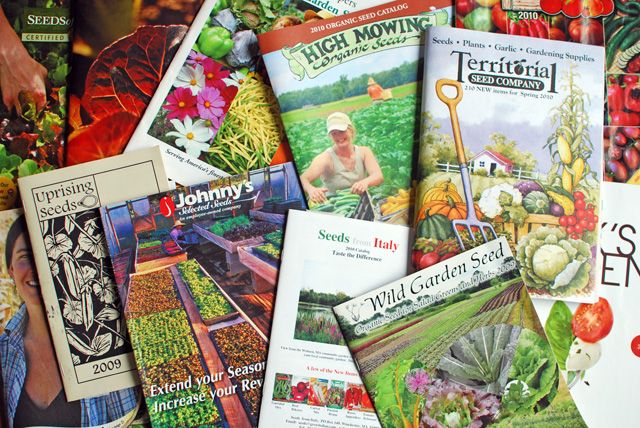 garden seed catalogs. Organic Seed Catalogs Garden N